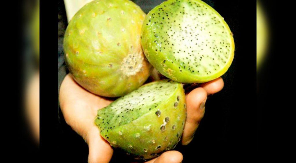 El Sanky es rico en vitamina C. Contiene potasio, cinco veces más que el plátano.
